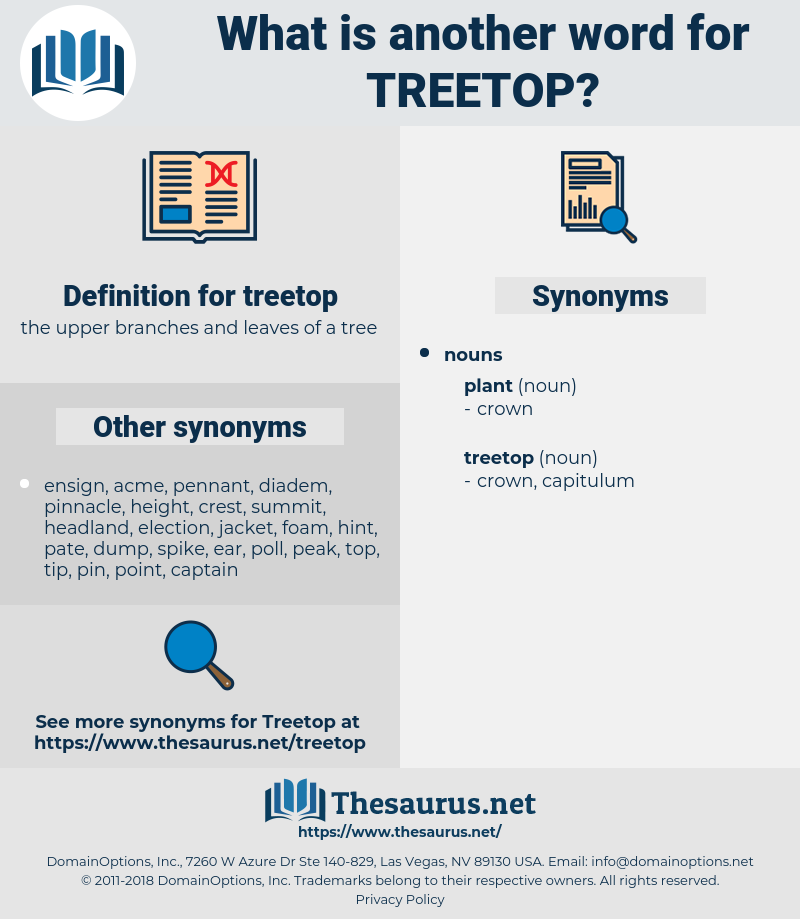 treetop, synonym treetop, another word for treetop, words like treetop, thesaurus treetop