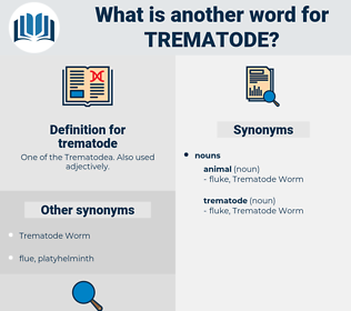 trematode, synonym trematode, another word for trematode, words like trematode, thesaurus trematode