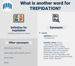 trepidation, synonym trepidation, another word for trepidation, words like trepidation, thesaurus trepidation