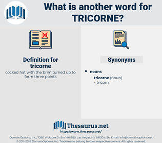 tricorne, synonym tricorne, another word for tricorne, words like tricorne, thesaurus tricorne