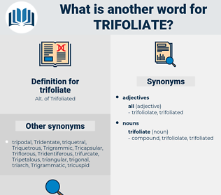 trifoliate, synonym trifoliate, another word for trifoliate, words like trifoliate, thesaurus trifoliate