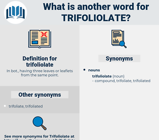 trifoliolate, synonym trifoliolate, another word for trifoliolate, words like trifoliolate, thesaurus trifoliolate
