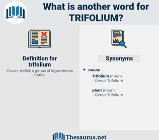trifolium, synonym trifolium, another word for trifolium, words like trifolium, thesaurus trifolium