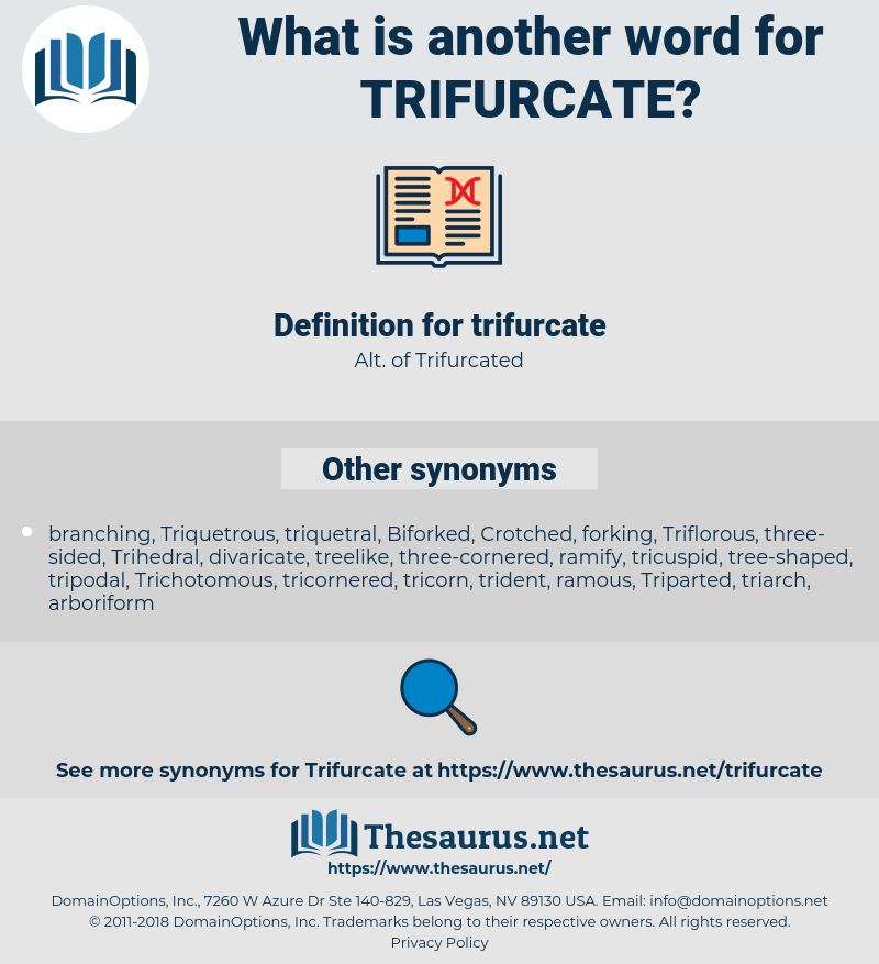 trifurcate, synonym trifurcate, another word for trifurcate, words like trifurcate, thesaurus trifurcate