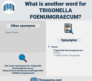 Trigonella Foenumgraecum, synonym Trigonella Foenumgraecum, another word for Trigonella Foenumgraecum, words like Trigonella Foenumgraecum, thesaurus Trigonella Foenumgraecum