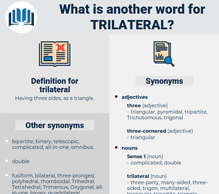 trilateral, synonym trilateral, another word for trilateral, words like trilateral, thesaurus trilateral