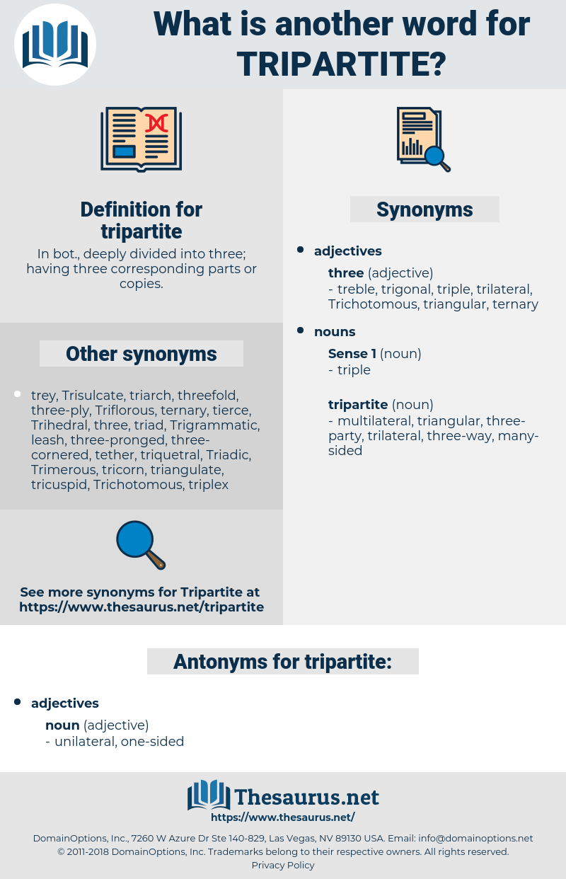 Synonyms for TRIPARTITE, Antonyms for TRIPARTITE - Thesaurus net