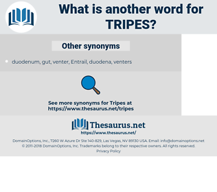 tripes, synonym tripes, another word for tripes, words like tripes, thesaurus tripes