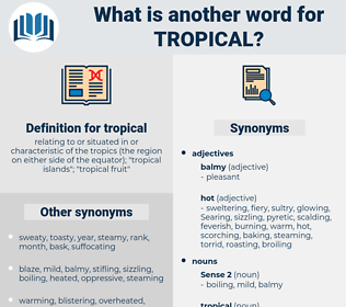 tropical, synonym tropical, another word for tropical, words like tropical, thesaurus tropical