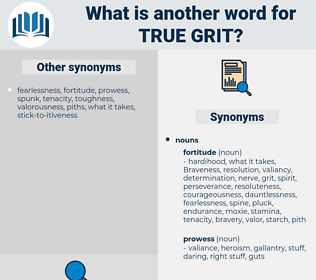 true grit, synonym true grit, another word for true grit, words like true grit, thesaurus true grit