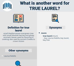 true laurel, synonym true laurel, another word for true laurel, words like true laurel, thesaurus true laurel