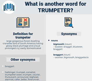 trumpeter, synonym trumpeter, another word for trumpeter, words like trumpeter, thesaurus trumpeter