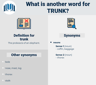 trunk, synonym trunk, another word for trunk, words like trunk, thesaurus trunk