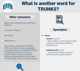 trunks, synonym trunks, another word for trunks, words like trunks, thesaurus trunks