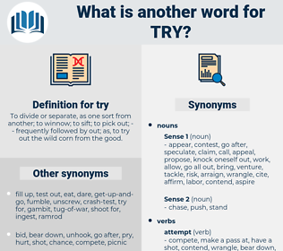 try, synonym try, another word for try, words like try, thesaurus try