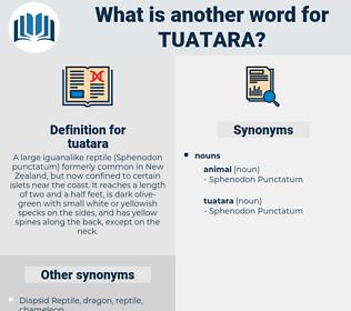 tuatara, synonym tuatara, another word for tuatara, words like tuatara, thesaurus tuatara