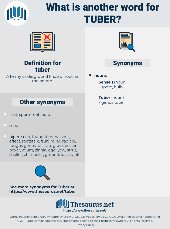 tuber, synonym tuber, another word for tuber, words like tuber, thesaurus tuber