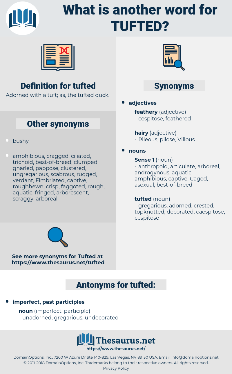 tufted, synonym tufted, another word for tufted, words like tufted, thesaurus tufted