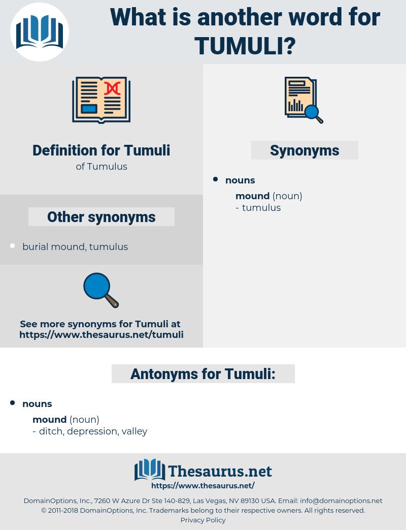 Tumuli, synonym Tumuli, another word for Tumuli, words like Tumuli, thesaurus Tumuli