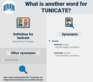 tunicate, synonym tunicate, another word for tunicate, words like tunicate, thesaurus tunicate
