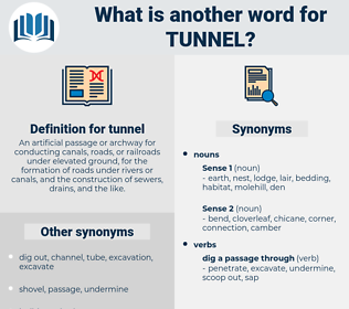 tunnel, synonym tunnel, another word for tunnel, words like tunnel, thesaurus tunnel