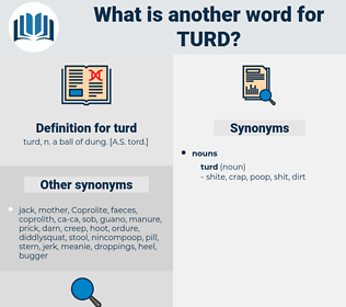 turd, synonym turd, another word for turd, words like turd, thesaurus turd