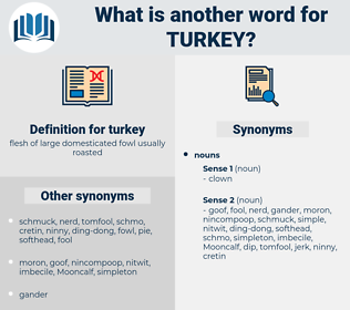 turkey, synonym turkey, another word for turkey, words like turkey, thesaurus turkey