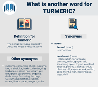 turmeric, synonym turmeric, another word for turmeric, words like turmeric, thesaurus turmeric
