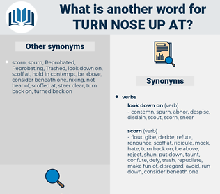 turn nose up at, synonym turn nose up at, another word for turn nose up at, words like turn nose up at, thesaurus turn nose up at