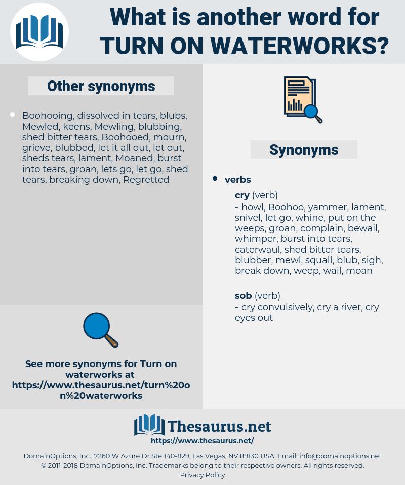 turn on waterworks, synonym turn on waterworks, another word for turn on waterworks, words like turn on waterworks, thesaurus turn on waterworks