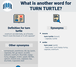 turn turtle, synonym turn turtle, another word for turn turtle, words like turn turtle, thesaurus turn turtle
