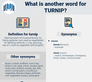 turnip, synonym turnip, another word for turnip, words like turnip, thesaurus turnip