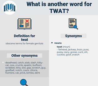 twat, synonym twat, another word for twat, words like twat, thesaurus twat