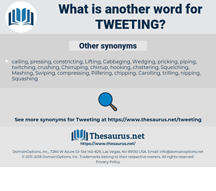 tweeting, synonym tweeting, another word for tweeting, words like tweeting, thesaurus tweeting