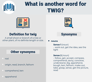 twig, synonym twig, another word for twig, words like twig, thesaurus twig