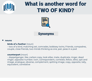 two of kind, synonym two of kind, another word for two of kind, words like two of kind, thesaurus two of kind