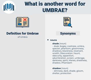 Umbrae, synonym Umbrae, another word for Umbrae, words like Umbrae, thesaurus Umbrae