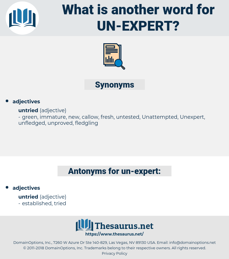 un expert, synonym un expert, another word for un expert, words like un expert, thesaurus un expert