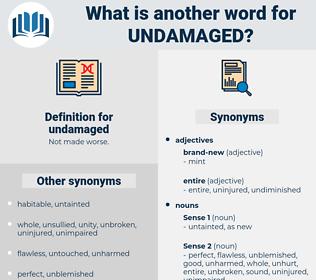 undamaged, synonym undamaged, another word for undamaged, words like undamaged, thesaurus undamaged