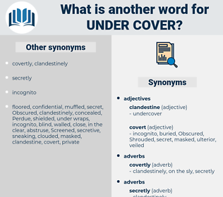under cover, synonym under cover, another word for under cover, words like under cover, thesaurus under cover