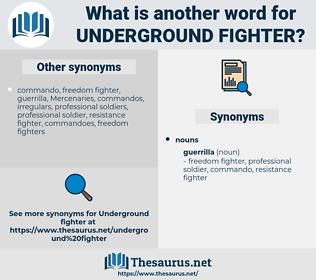 underground fighter, synonym underground fighter, another word for underground fighter, words like underground fighter, thesaurus underground fighter