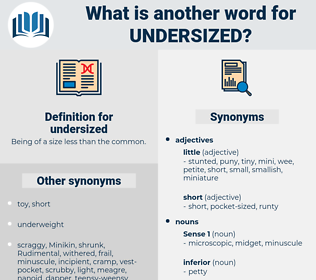 undersized, synonym undersized, another word for undersized, words like undersized, thesaurus undersized