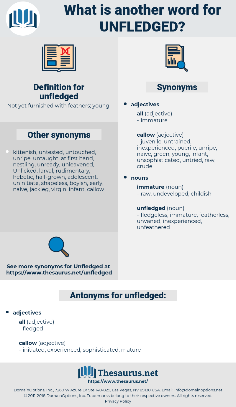 unfledged, synonym unfledged, another word for unfledged, words like unfledged, thesaurus unfledged