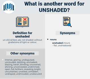 unshaded, synonym unshaded, another word for unshaded, words like unshaded, thesaurus unshaded