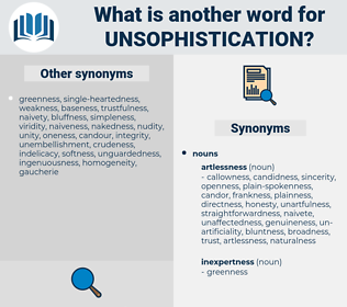 unsophistication, synonym unsophistication, another word for unsophistication, words like unsophistication, thesaurus unsophistication