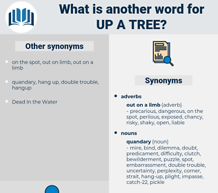 up a tree, synonym up a tree, another word for up a tree, words like up a tree, thesaurus up a tree
