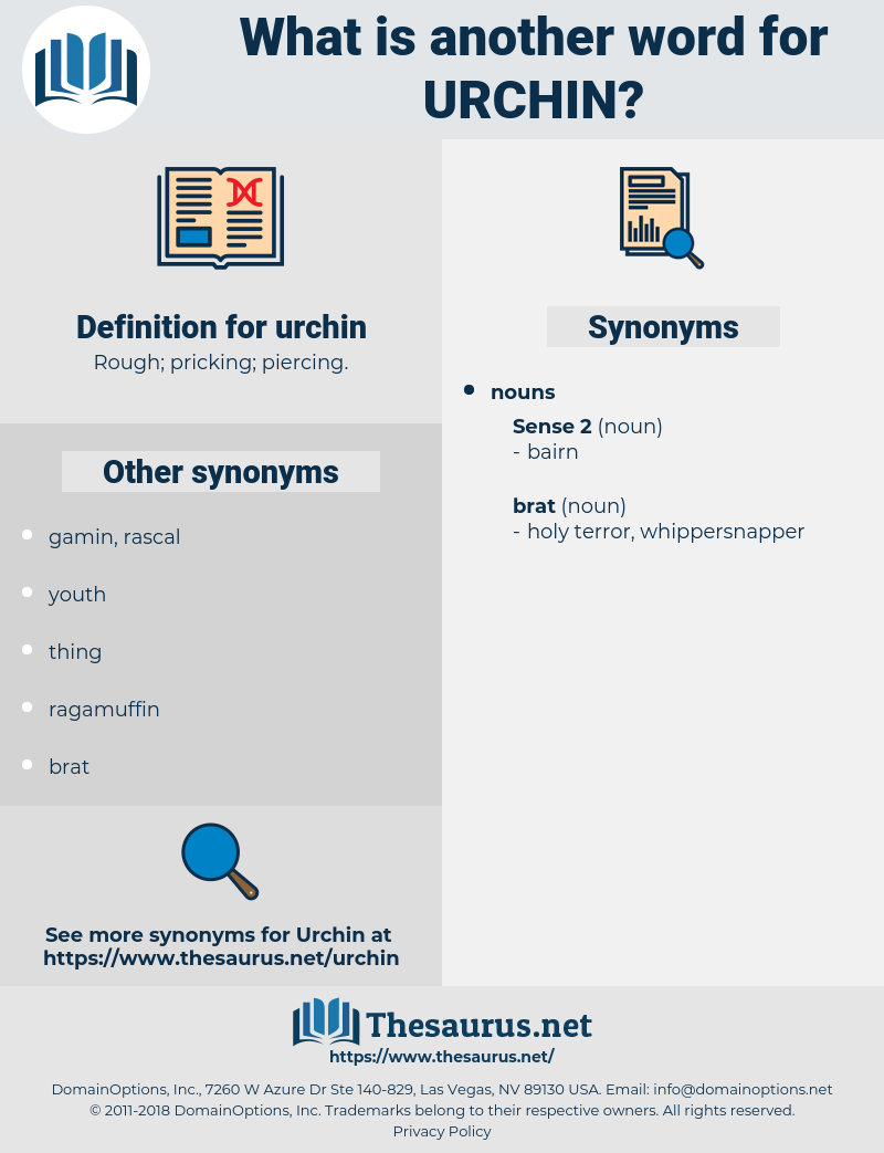 urchin, synonym urchin, another word for urchin, words like urchin, thesaurus urchin