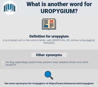 uropygium, synonym uropygium, another word for uropygium, words like uropygium, thesaurus uropygium