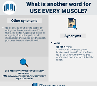 use every muscle, synonym use every muscle, another word for use every muscle, words like use every muscle, thesaurus use every muscle