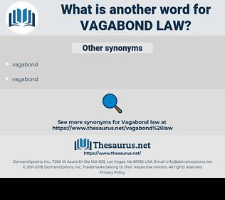 vagabond law, synonym vagabond law, another word for vagabond law, words like vagabond law, thesaurus vagabond law